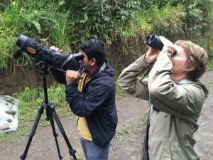 Alex Luna, our birder guide in Mindo, and Darlene on yesterday's walk.